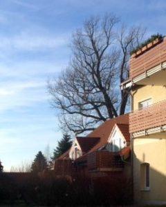 Verkauf Eigentumswohnung WaltherRathenauStraße