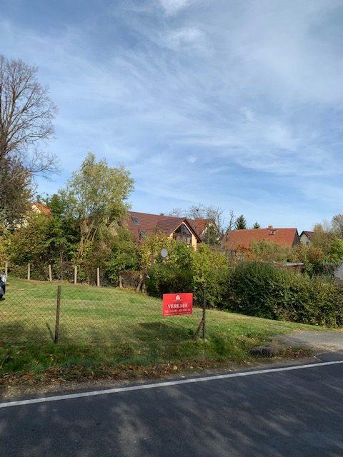 Großzügiges Baugrundstück mit abrissreifem Altbestand in naturnaher Dorflage Königshain für EFH