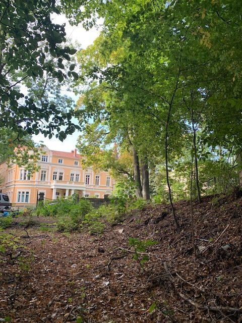 Innerstädtisches Baugrundstück zur Errichtung von 3 Mehrfamilienhäusern + 33 Stellplätzen mit positivem Bauvorbescheid!